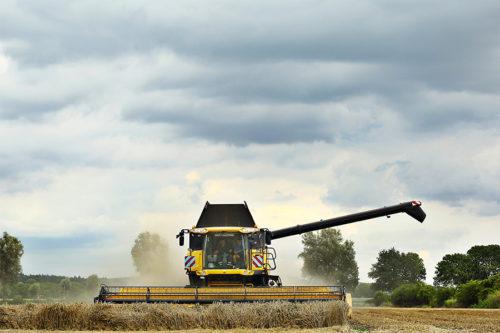 tarwe oogst agrifotograaf Loonbedrijf Nas