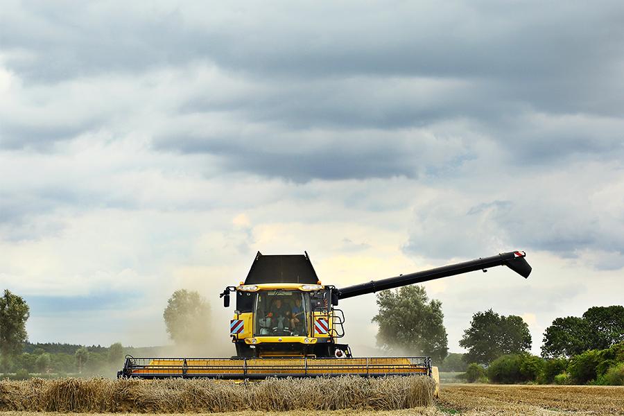 tarwe oogst new holland cr9090