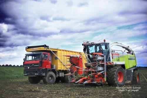 Maisoogst - Loonbedrijf Groesbeek agrifotograaf