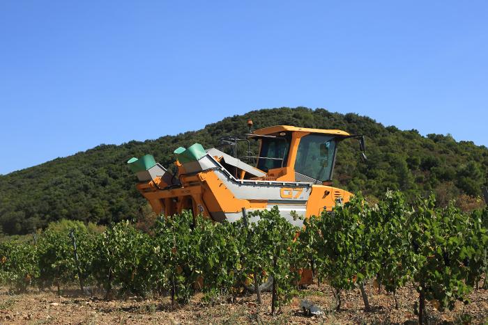 druivenoogst met de Gregoire G7 Frankrijk agrifotograaf