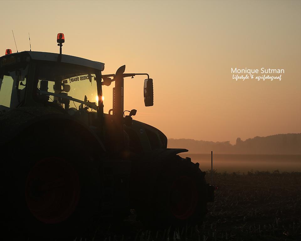 maisoogst zonsopkomst Agrifotograaf
