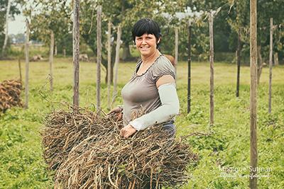 agrarisch fotograaf - Emmie van Mullekom
