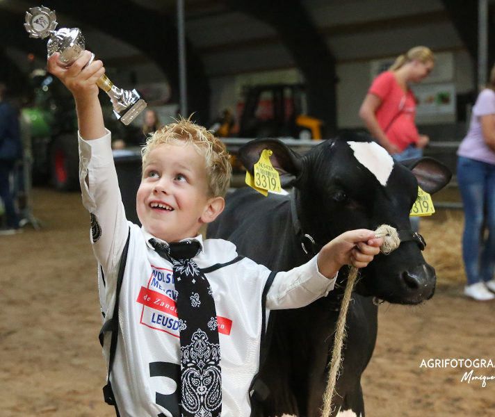 Cow Valley Dairy show 2018