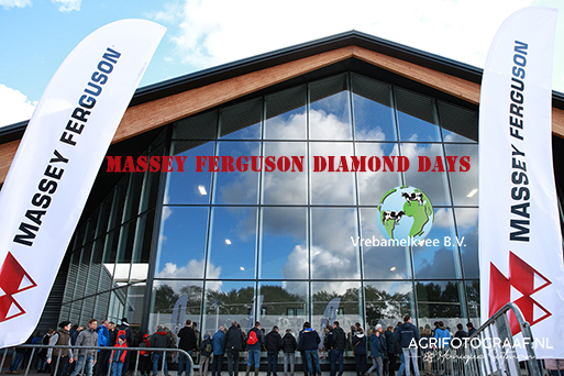 Massey Ferguson diamond days