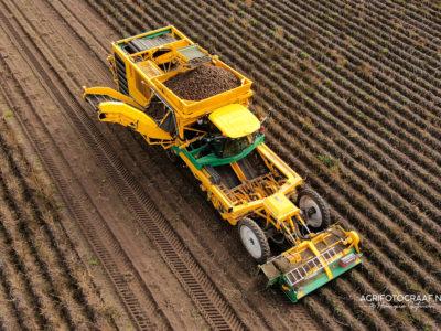 aardappels rooien met ploeger - luchtfoto agrifotograaf